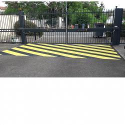 Zebra portail
